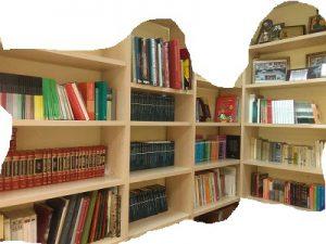 Biblioteca Avesal