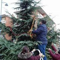 árbol Navidad Avesal